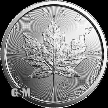 2019 1 oz Canadian Platinum Maple Leaf